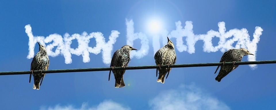 geburtstag-80-vögel