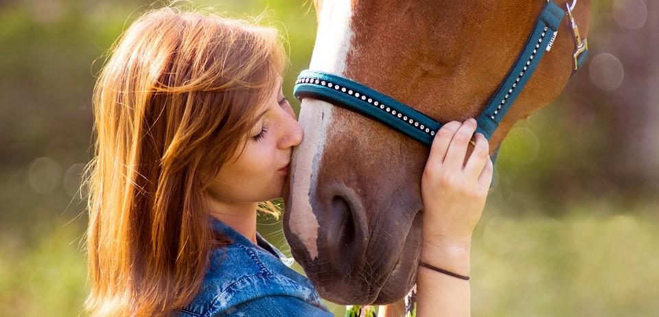 pferd-frau-chat