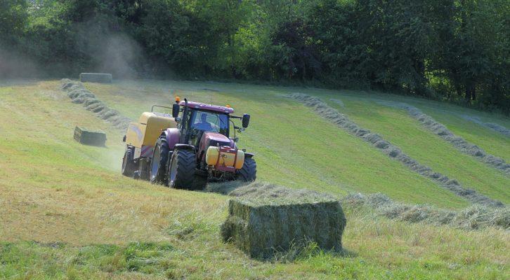 Die sind die aktuellen landwirtschaftlichen Trends im Saarland